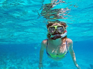 Sukee Snorkeling in the Caribbean